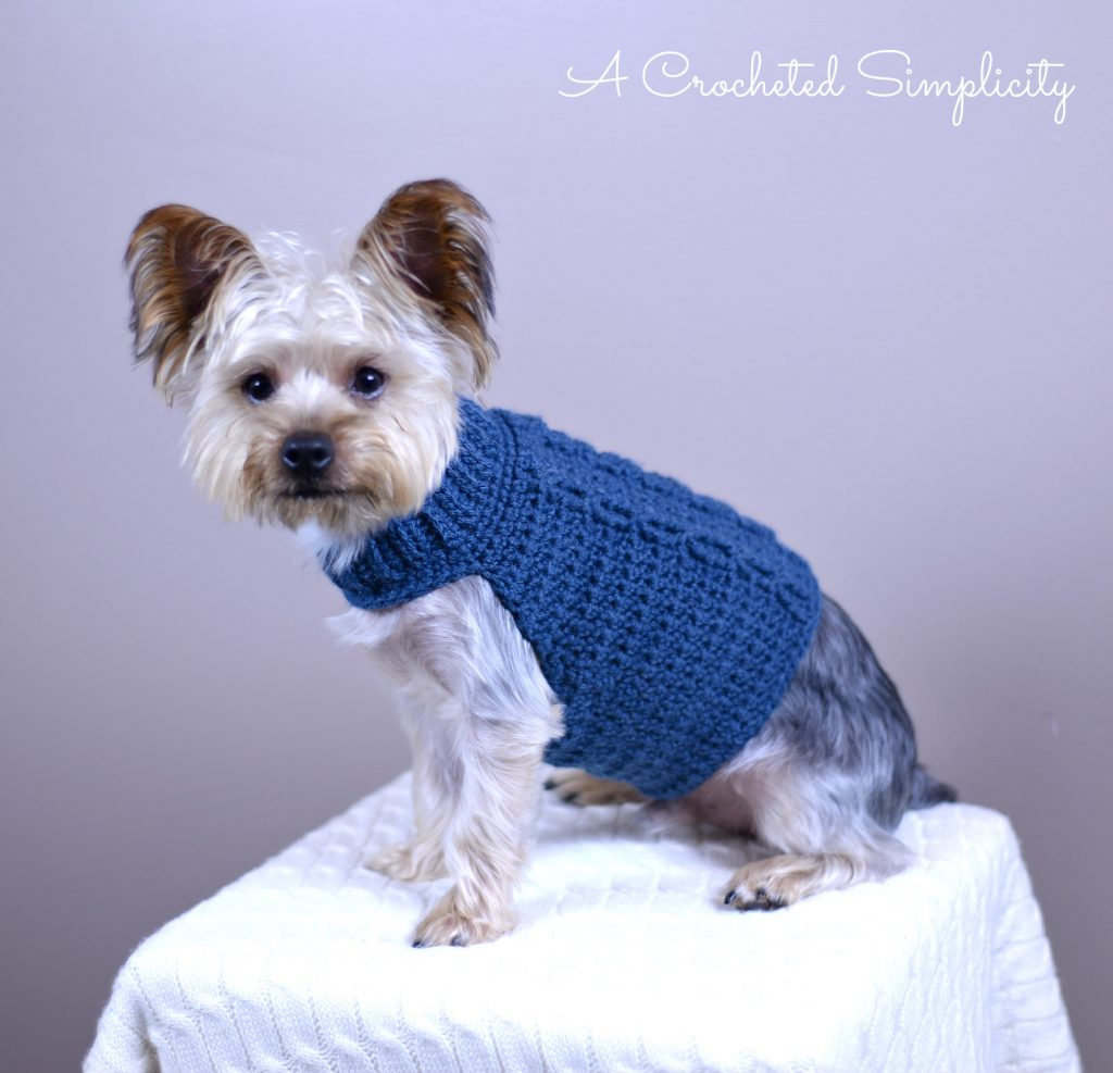 2ac645b2e78fcd Free Crochet Pattern - Cabled Dog Sweater by A Crocheted Simplicity. ""