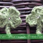 Free Crochet Pattern - Shamrock by The Stitchin' Mommy